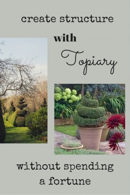 Grow topiary in the garden or in pots