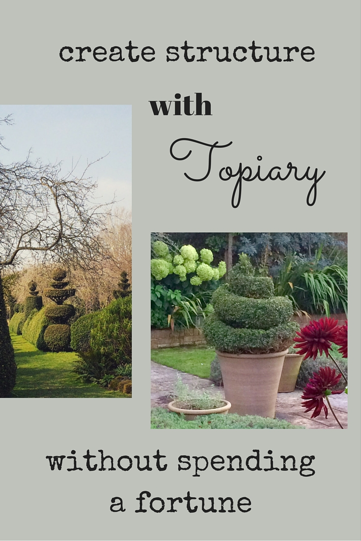 How To Buy Sensational Topiary On A Middle Sized Budget The Middle Sized Garden Gardening Blog