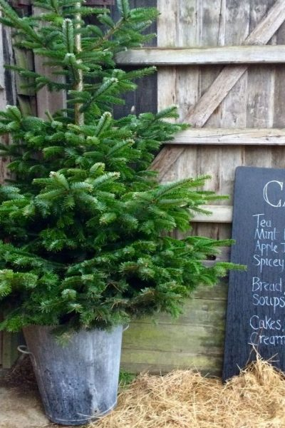 The Great Dixter Christmas Fair
