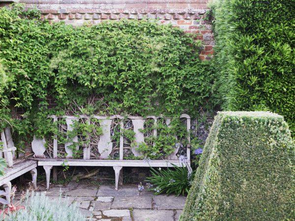 Hedges for shelter