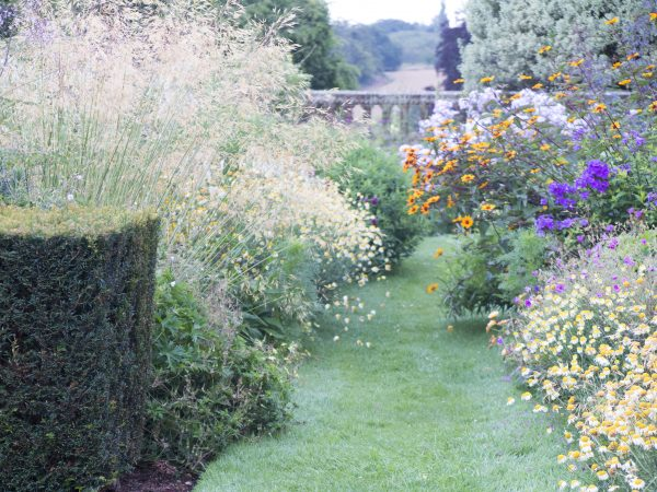Anchor a lavish planting with hedging