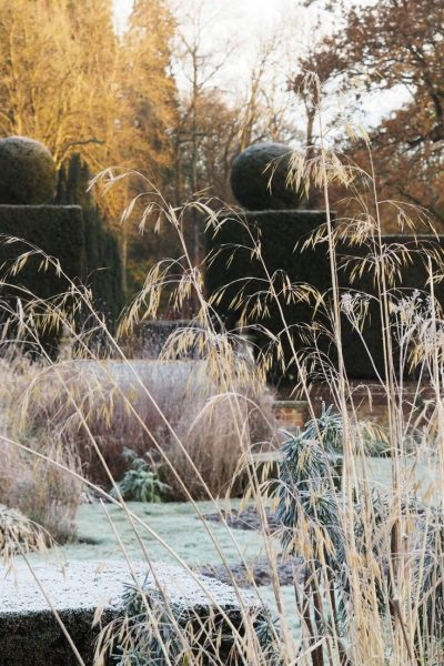 Winter at Doddington Place Gardens