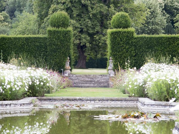 Use hedging to mark out sections of your garden