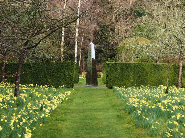 Daffodils at Doddington Place