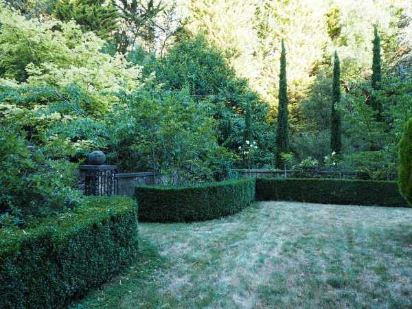 Italian cypress and neatly clipped hedges for classical garden design #gardendesign