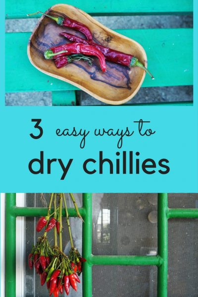 Three easy ways to dry chillies - hang your chilli plant upside down, make a festive chilli string or oven dry your chillies