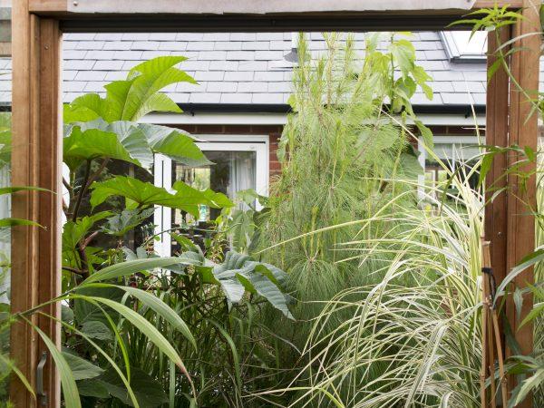 A tropical garden needs a greenhouse