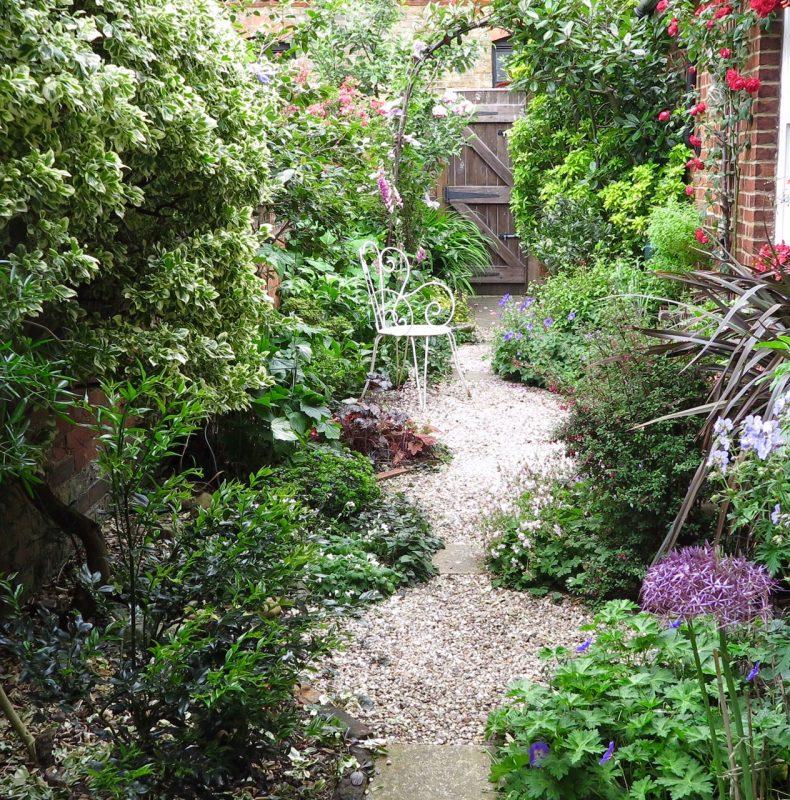 Shady garden with abundant planting