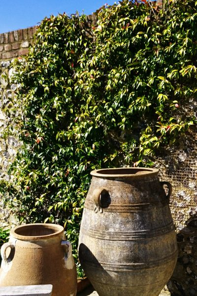 The ultimate low-maintenance garden pot