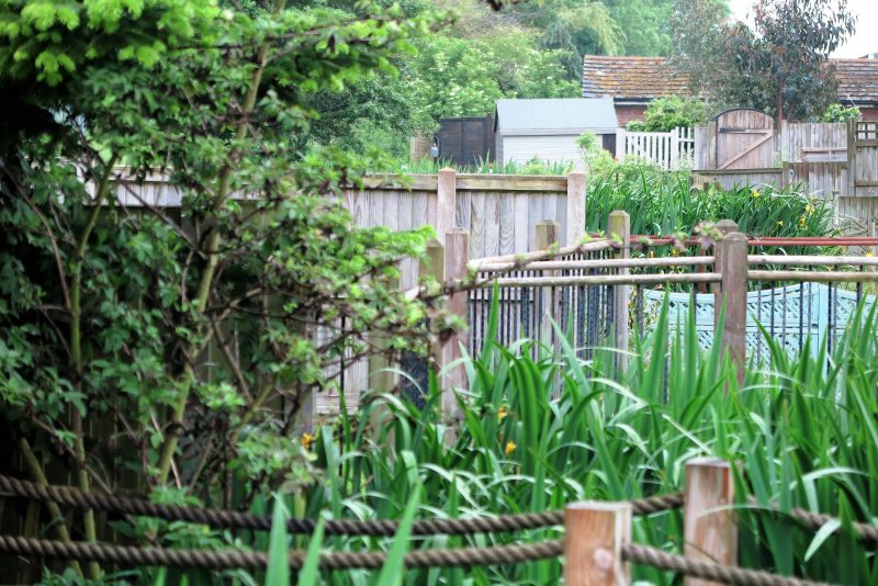 Faversham Open Gardens