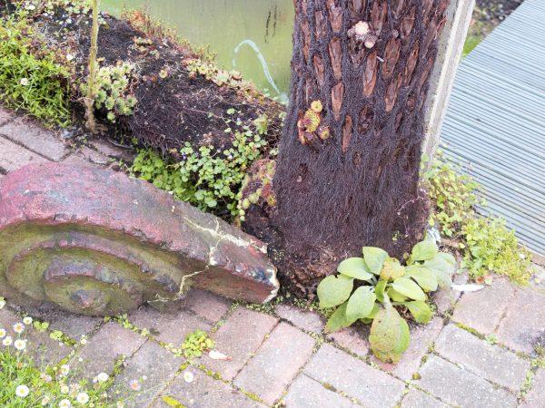 Recycle broken furniture in the garden