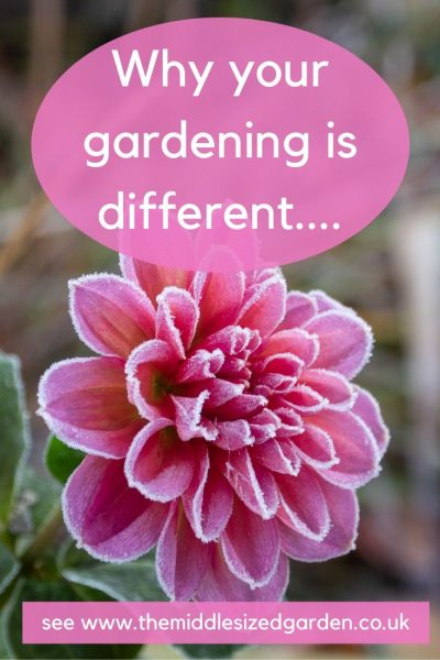 about gardening advice