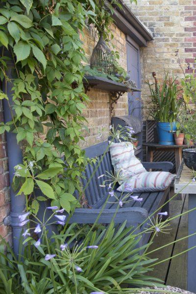 Francine Raymond's stylish open garden