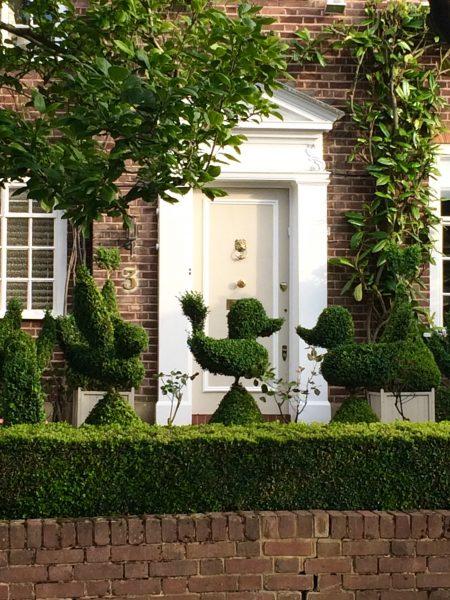 Topiary front garden
