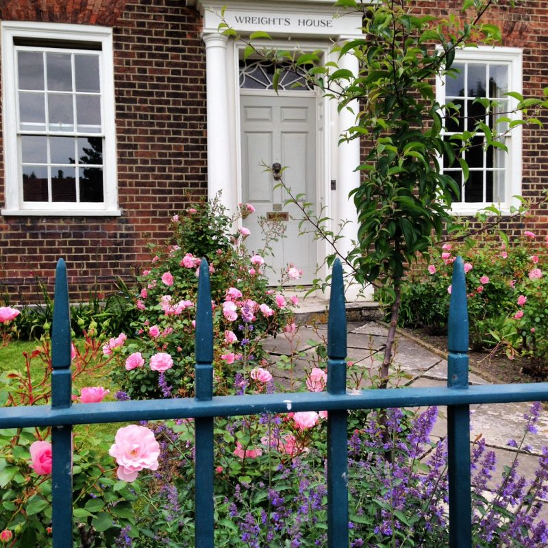 Rosa 'Bonica' and Nepeta Six Hills Giant' have both been moved successfully from elsewhere