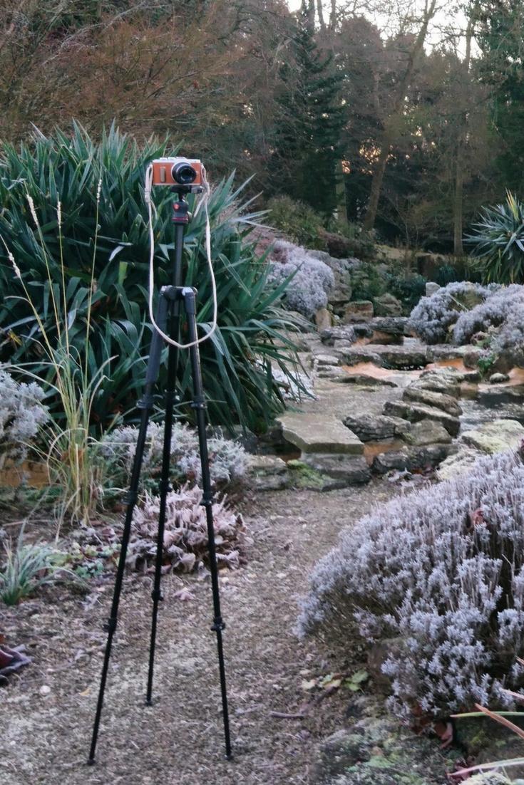 Youtube gardening - who to follow