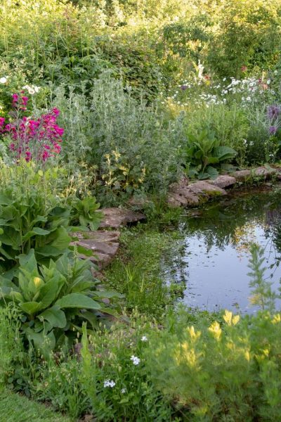 DIY garden pond
