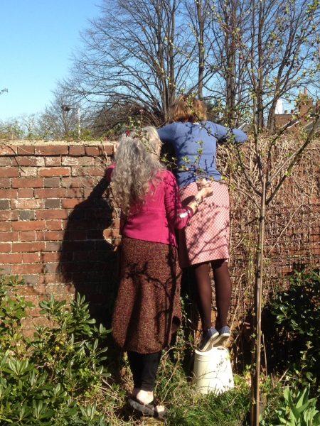 gardening friends on a bucket