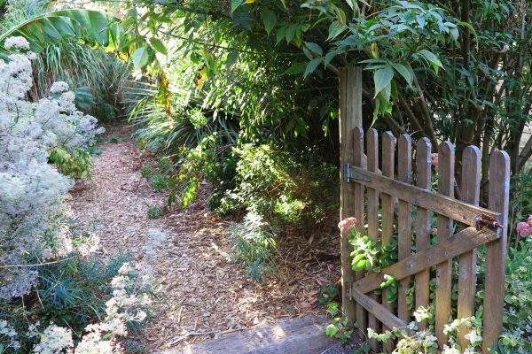 Tips for your garden path