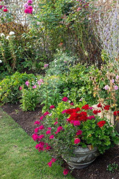 Garden planters in a border