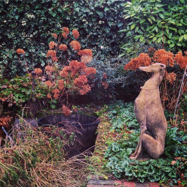Stone garden dogs
