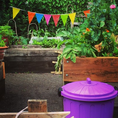 Colourful bins and bunting in the Kitchen Garden Community garden
