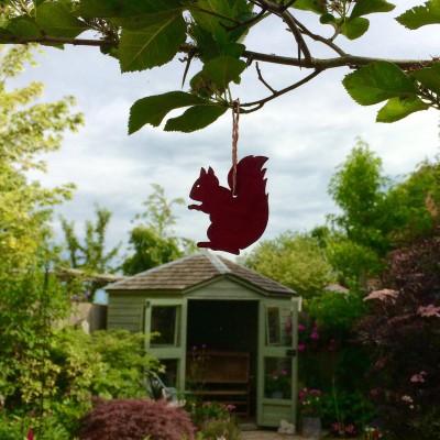 Aileen Smith garden