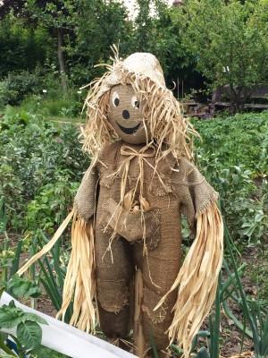 Abbey Physic garden scarecrow