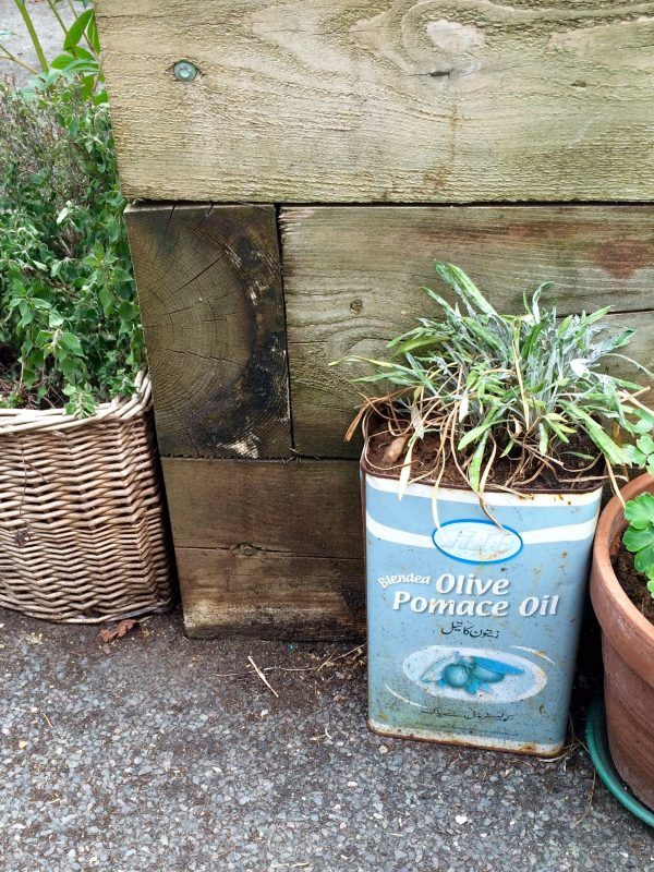 Re-use old tins and baskets as container gardens