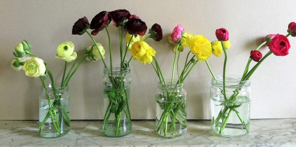 Divide a bunch of flowers into separate colours and put in separate containers.