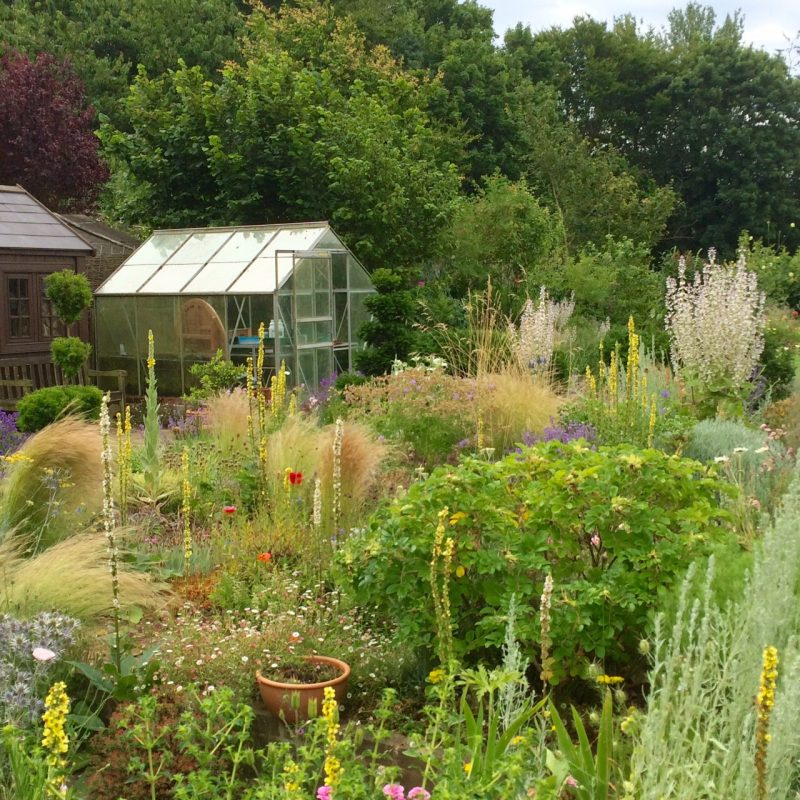 You can fit a greenhouse into a half-acre garden...