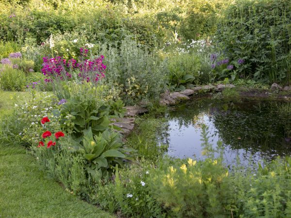 Dig your own garden pond
