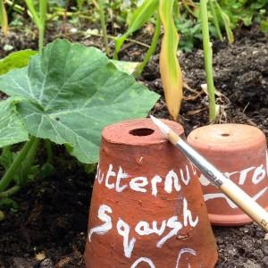 painted plant pot label