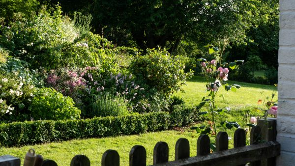 Liz Bradley divides up her garden with big borders