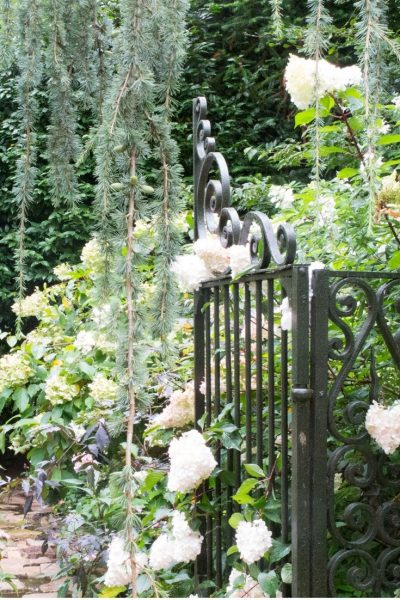 Salvaged antique garden gates at L'Agapanthe