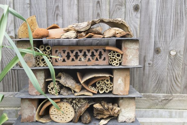 Bug hotel in a long thin town garden