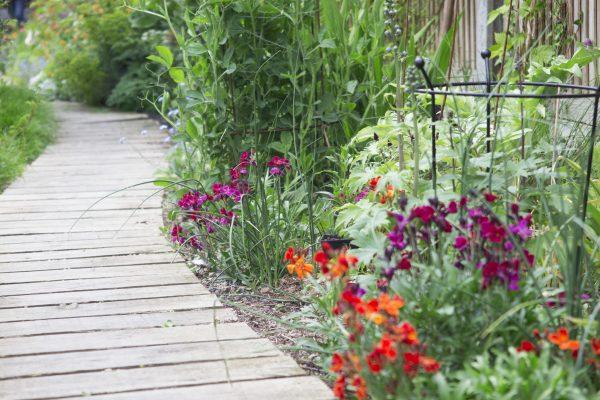 long thin garden design - Garden Design Long Thin