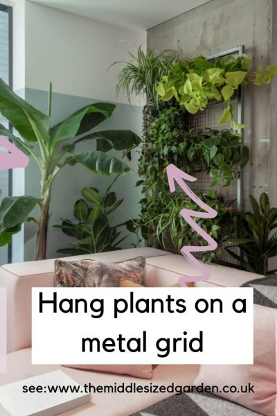 Use a wall grid to display plants