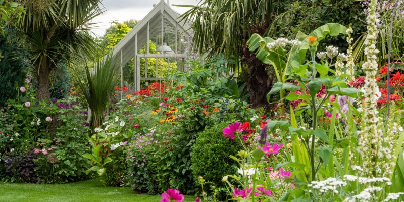 How to make a herbaceous border look amazing