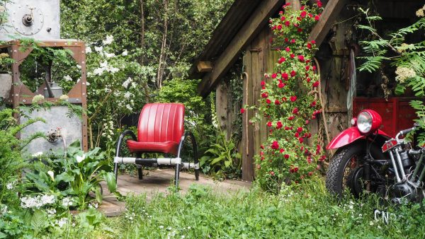 Small garden design trends include the 'neglected garden' look