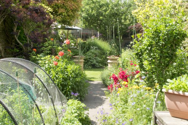 Or put your vegetable beds just outside the back door....