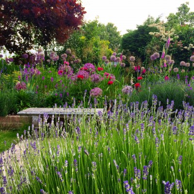 Use a simple bench in front of complex planting.
