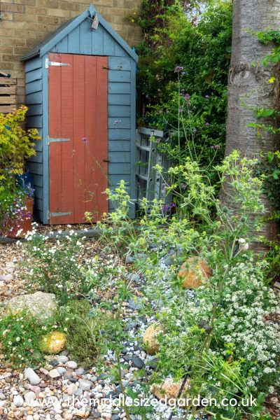 Shed storage for narrow gardens