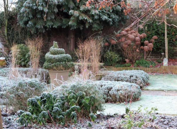 Grasses make good easy-care winter garden pots