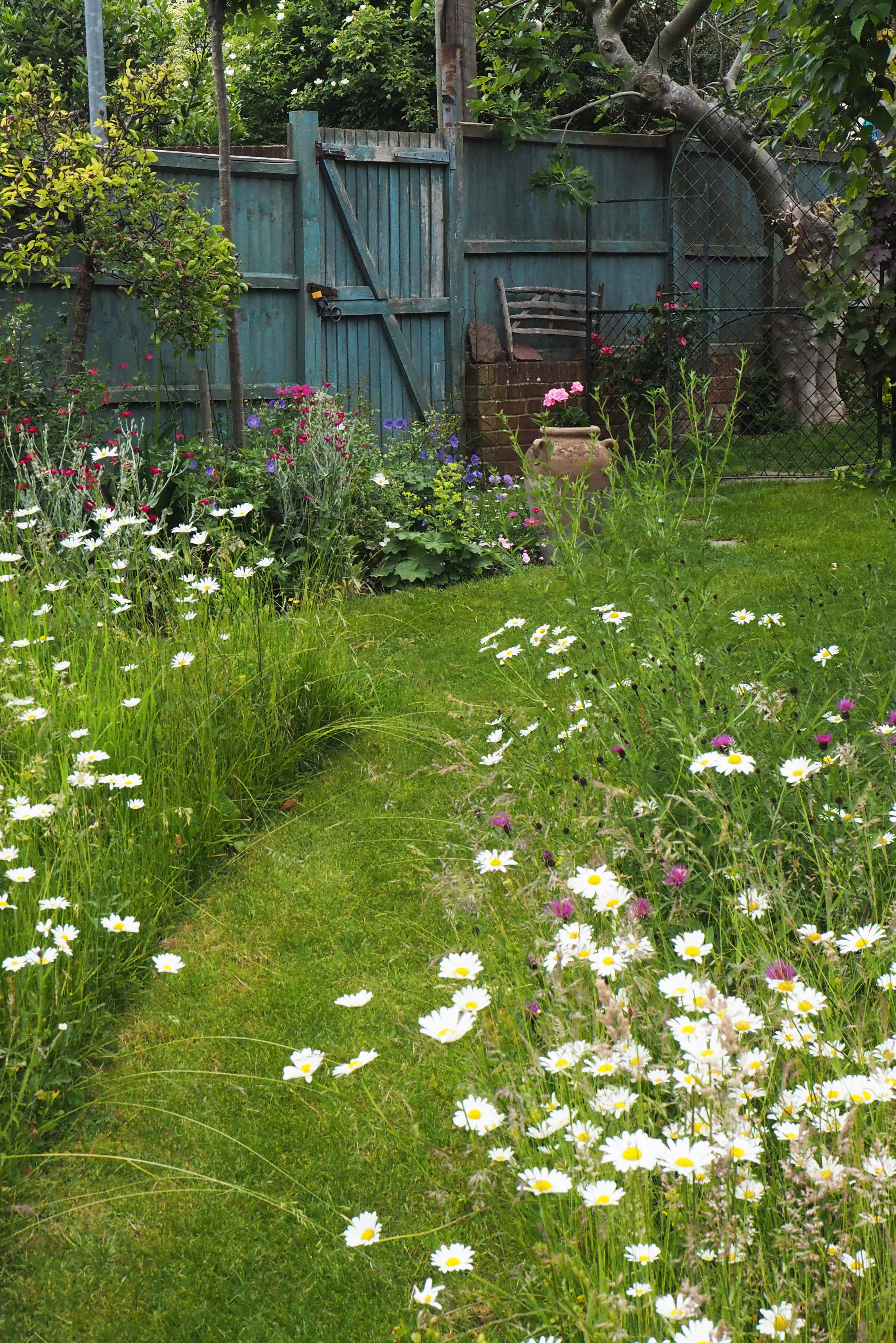 Lawn And Garden Near Me >> How To Create A Beautiful Mini Meadow Garden The Middle