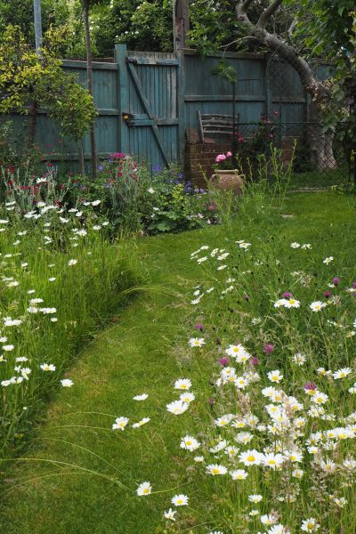Mown paths for a meadow lawn