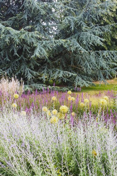 Naturalistic planting at Kew's long borders