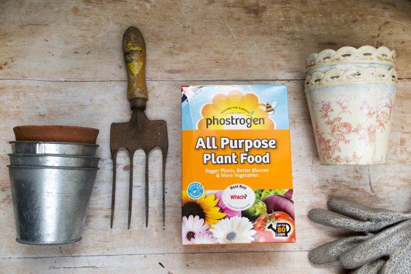 Phostrogen All Purpose Plant Food