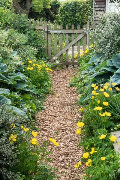 A peaceful green and yellow colour theme for a summer path