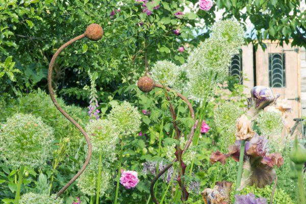 Posy Gentles' garden